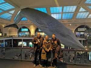Whale museum staff in Natural History Museum New York City